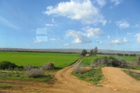 14_z-enquete-algerie-perimetre-agricole-dans-loranais.jpg