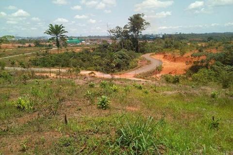 Près de 80% des terrains cédés aux SCI dans l'Estuaire. © D.R.