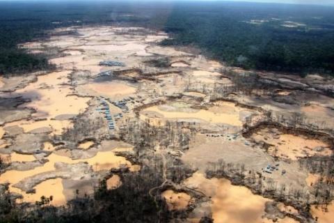 Foto: WFU/ACERS... - Veja mais em https://jamilchade.blogosfera.uol.com.br/2019/07/19/cobertura-florestal-na-america-latina-e-que-mais-sofreu-queda-no-seculo-21/?cmpid=copiaecola