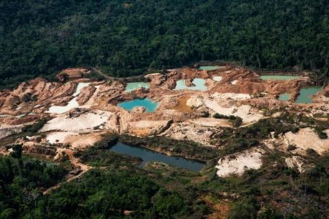 FOTO DE DIVULGAÇÃO WWF-BRASIL/ARAQUÉM ALCÂNTARA