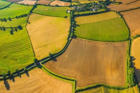 terres arables