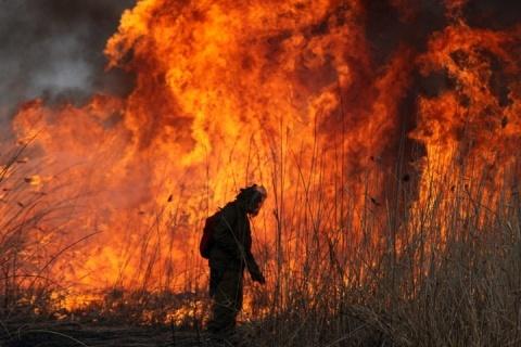 feux de forêt en russie