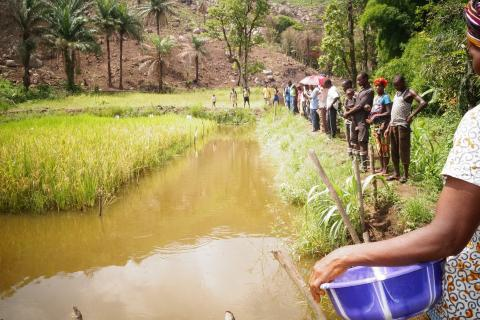 Sierre Leone agriculture photo by WorldFish