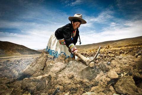 indigenous peoples climate change