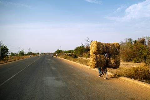 Burkina Faso picture CIFOR
