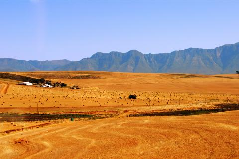 south africa farmland