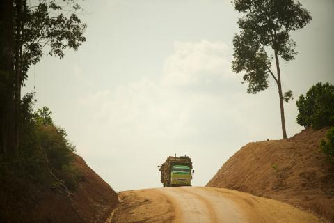 Rainforest Action Network image