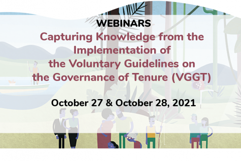 Capturing Knowledge from the  Implementation of the VGGT