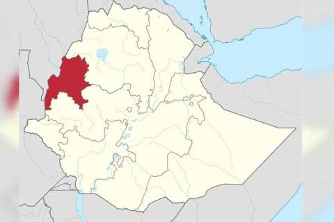 Benishangul, Gambela accudes of illegal landdistribution - The Reporter