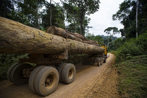 Wood truck, photo by CIFOR, 2012, CC BY-NC 2.0 license