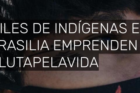 Indígenas Brasil_Foto artículo Greenpeace