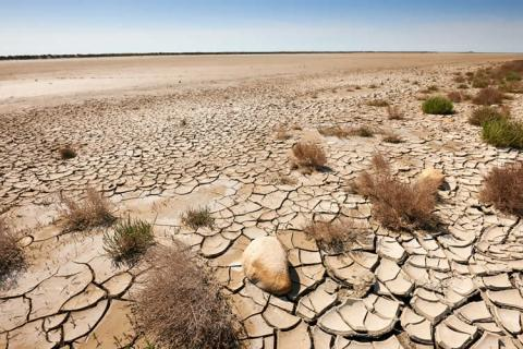 Causes-and-Effects-of-Desertification.jpg