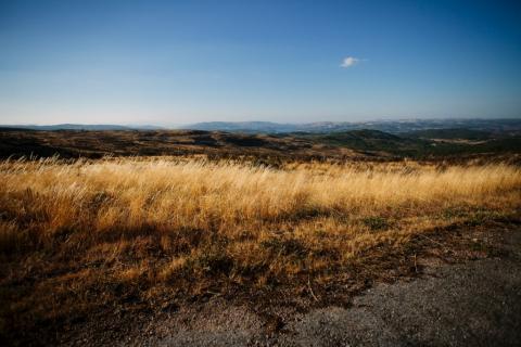 Portugal tem 2,9 milhões de proprietários de 8,4 milhões de hectares de solos rústicos JOSE SARMENTO MATOS (ARQUIVO)