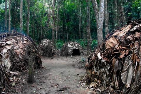 Gestion de l'environnement en Afrique centrale