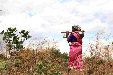 National datasets differ on women's land rights because they use different criteria in their calculations.