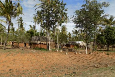 A village in Kilifi County, Kenya