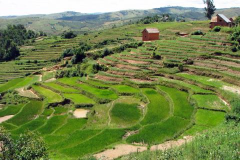 Landscape_Madagascar_06.jpg