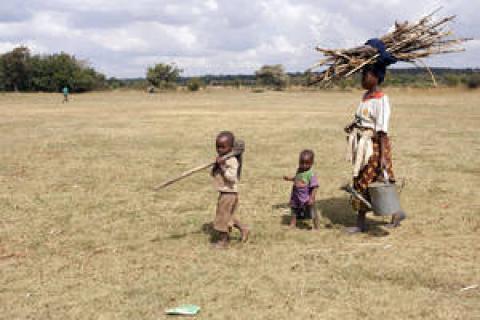 Au Malawi, Grace Chikumbutso et ses enfants débroussaillent leur potager.