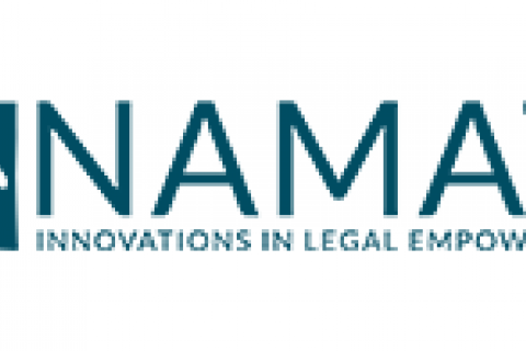 Namati Logo