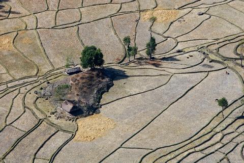 An aerial view of the rice fields in Baucau, Timor-Leste.UN, 2008 CC BY-NC-SA 2.0