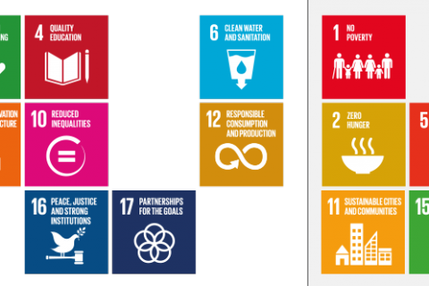 Sustainable Development Goals (SDGs) and Land Rights