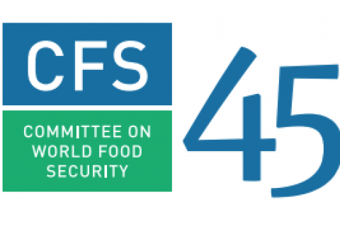 Committee on World Food Security (CFS 45) image