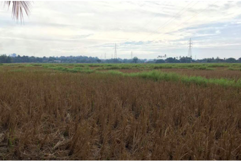 Lao Capital Residents Fight Land Grab, Reject Offered Compensation