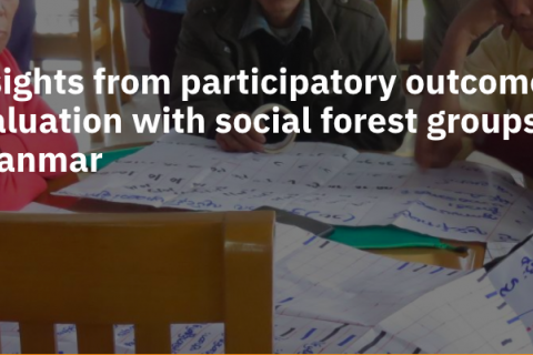 Insights from participatory outcome evaluation with social forest groups in Myanmar