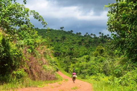 A photograph of the countryside in Sierra Leone