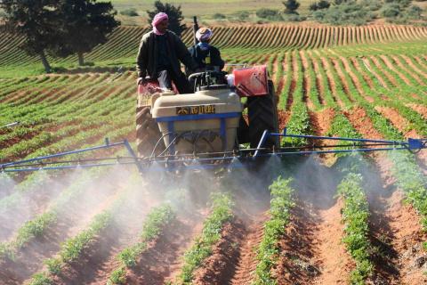 agriculture-algérienne.jpg