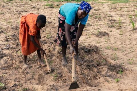 Land tenure insecurity in Zimbabwe