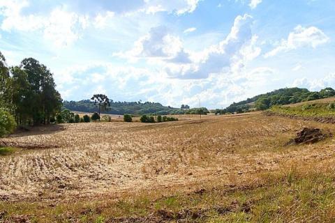 Área invadida registrou conflito há três anos em Sananduva (Foto: Reprodução/RBS TV)