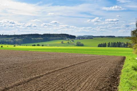 accaparement-des-terres-agricoles.jpg