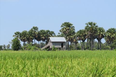 landscape-Cambodia