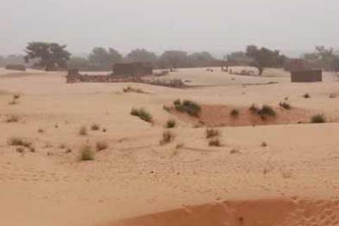 paysage-sahelien-un-jour-d-harmattan1_0.jpg