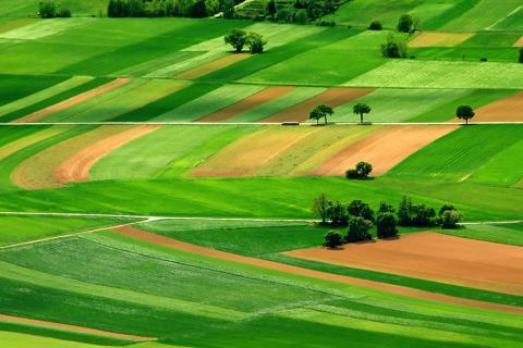 programme-agricole.jpg