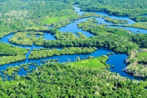 CIFOR via Flickr A new report says it costs just a few dollars per hectare of forest per year to secure indigenous land rights in the Amazon region. Read more at http://indiancountrytodaymedianetwork.com/2016/11/19/amazon-land-rights-face-greatest-threat-