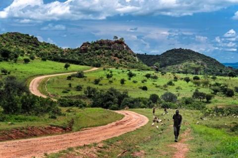 Photo Credit: Karamoja, Uganda, courtesy of Flickr User Rod Waddington.
