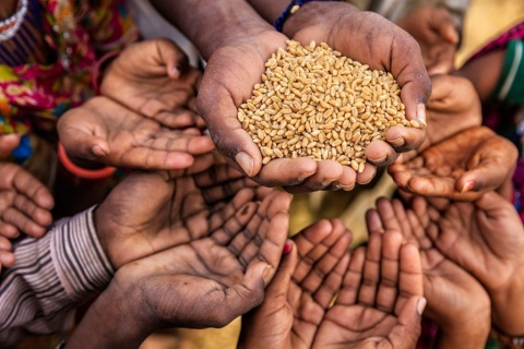 UN to ramp up food aid in DRC to reach 9 million people