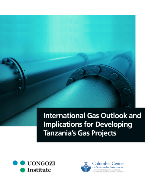 International Gas Outlook and Implications for Developing Tanzania's Gas Projects
