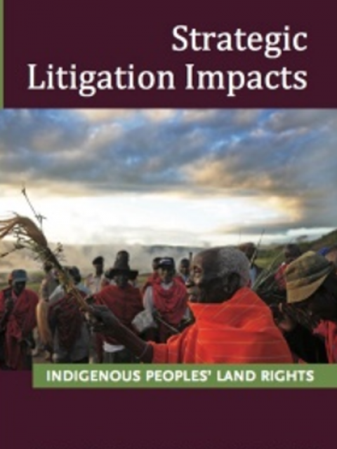 Strategic Litigation Impacts: Indigenous Peoples' Land Rights Cover image
