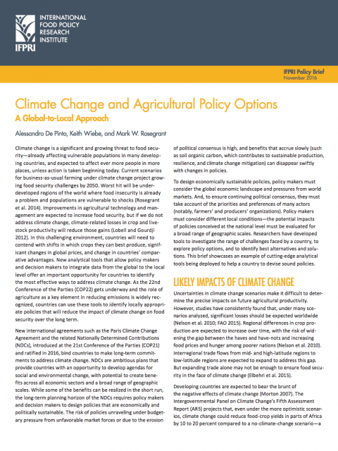 Climate change and agricultural policy options: A global-to-local approach cover image