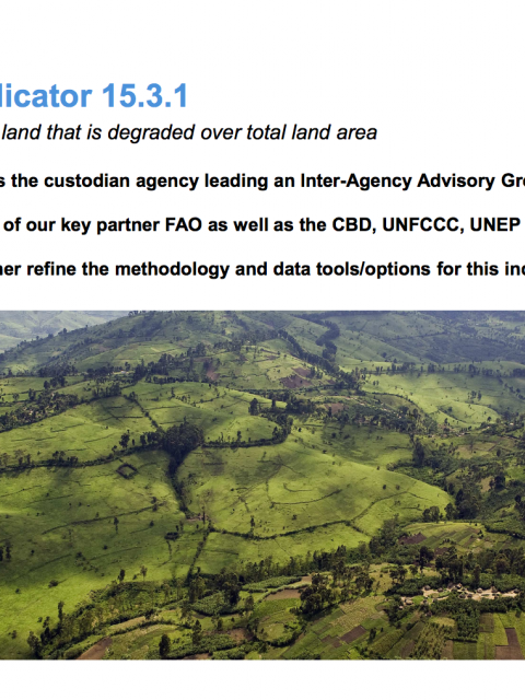 SDG indicator 15.3.1: Proportion of land that is degraded over total land area cover image