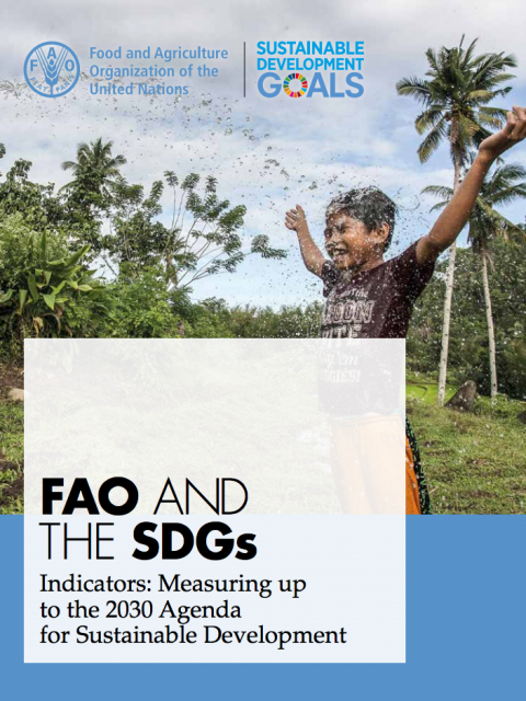 FAO and the SDGs cover image