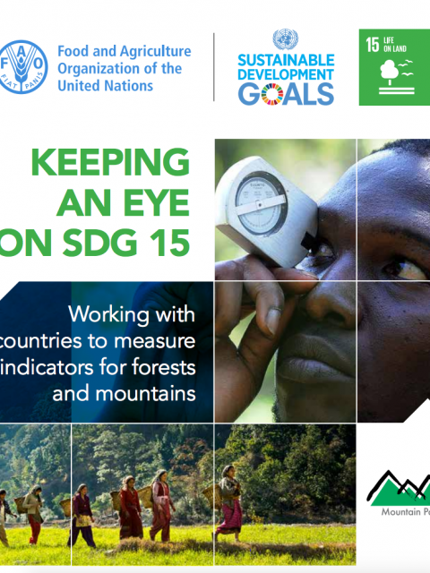 Keeping an Eye on SDG 15 cover image