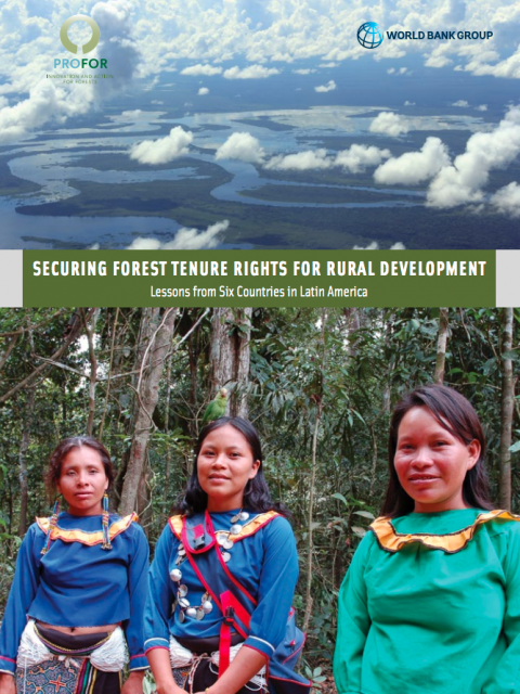 Securing Forest Tenure Rights for Rural Development: Lessons from Six Countries in Latin America cover image