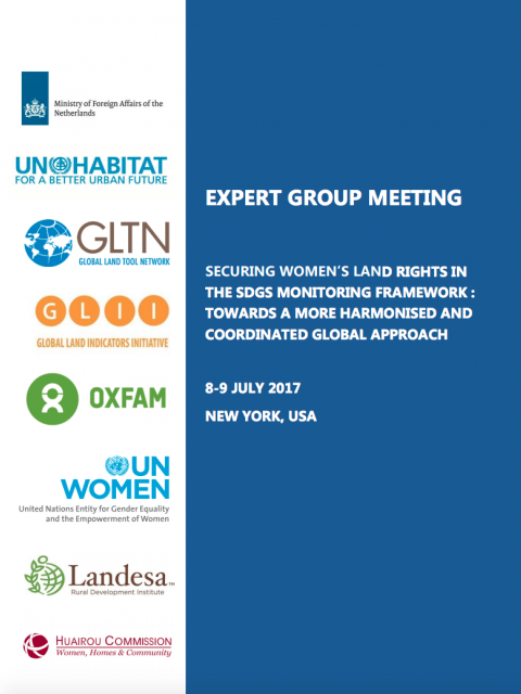 Expert Group Meeting: Securing Women's Land Rights In The SDGs Monitoring Framework cover image
