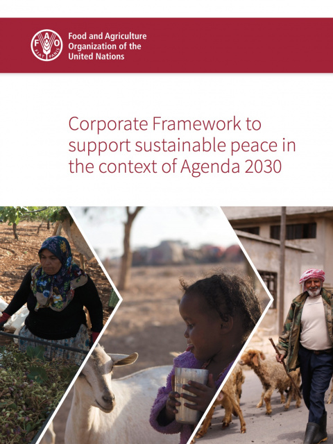 Corporate Framework to support sustainable peace in the context of Agenda 2030 cover image