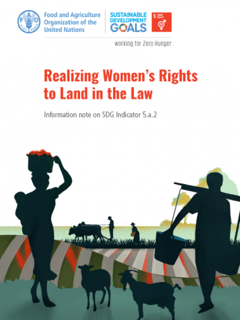 Realizing Women's Rights to Land in the Law
