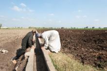 Egypt irrigation